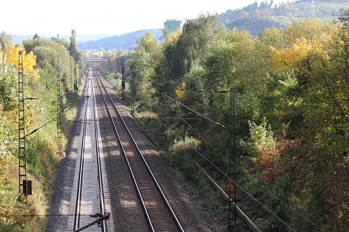 Railroad tracks through forest by teka77 123RF Stock Photo